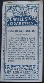 Rose, Anne of Geierstein
