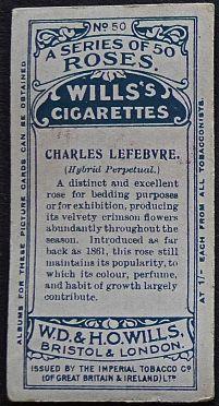 Rose, Charles Lefebvre