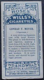 Rose, Conrad F. Meyer