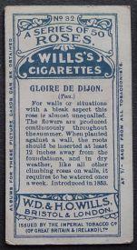 Rose, Gloire de Dijon