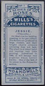 Rose, Jessie