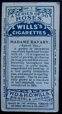 Rose, Madame Ravary