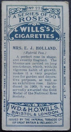 Rose, Mrs E. J. Holland