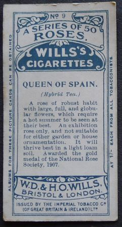 Rose, Queen of Spain