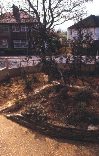 Australian effect front garden, 1987