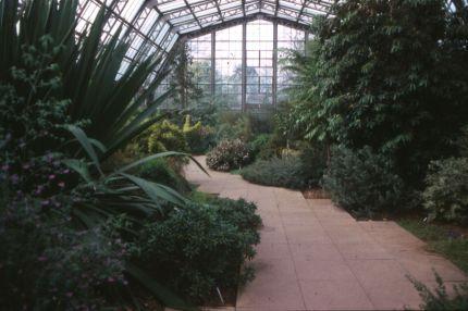 Australian House, Kew Gardens, 1982