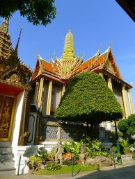 Tamarind tree at the Grand Palace, Bangkok