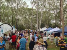 Best ever attendance: Ecofest 2014