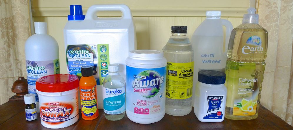 Clean and healthy water was this year's theme