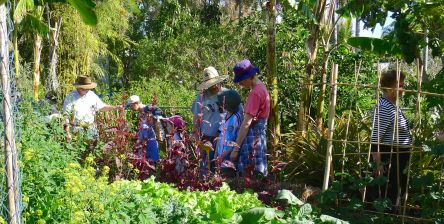 families are gardening together once more