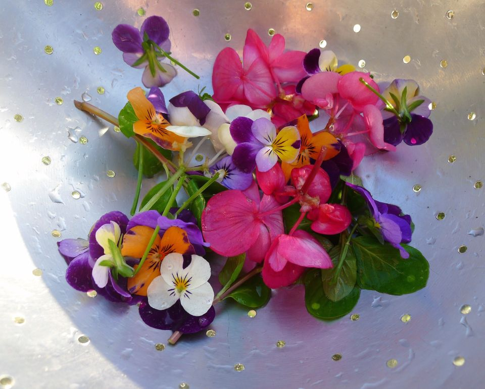 gently wash flowers before eating them