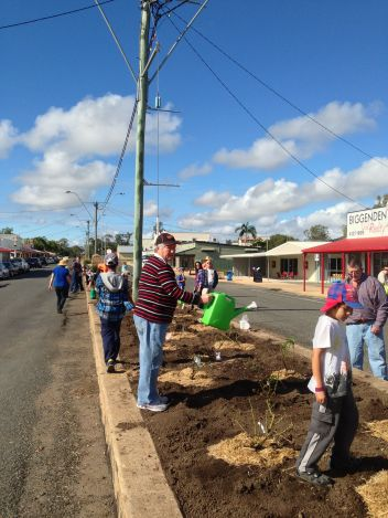 Biggenden Community Rose Garden, July 2013