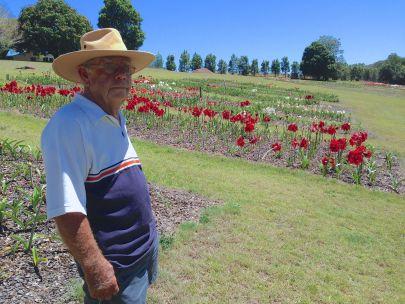 A lifetime achievement: Mick Maguire's Hippeastrum Farm