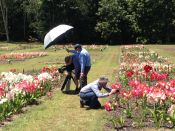 Filming a rare Australian cultural landscape