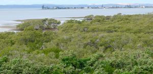 View across Moreton Bay from Empire Point