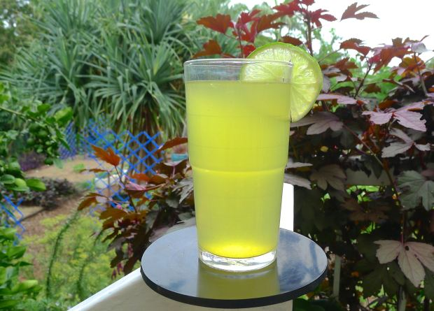 Hakim's Turmeric 'health' drink, Curcuma longa - 4