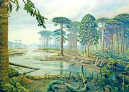 Bunya birthplace: Araucaroid forest, 100 mya