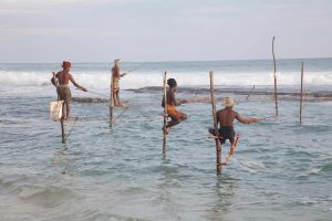 Stilt Fisherfolk