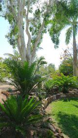 Best Waterwise Garden: Jane and Greg, Barcaldine