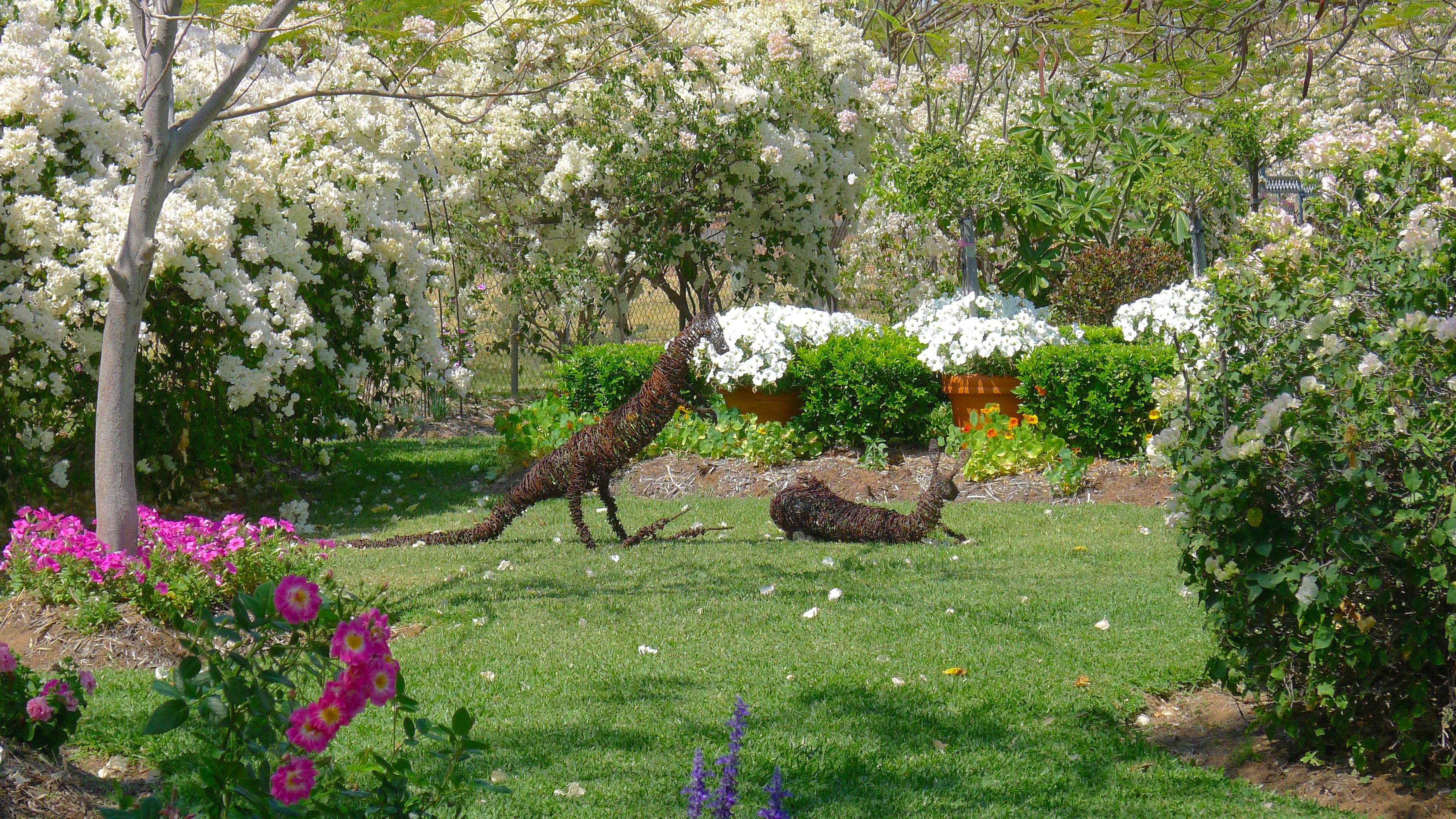 Cottage Gardens: Barcaldine In Bloom: Get Gardening! Expo 2015