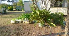 Organised, utilitarian garden, Barcaldine