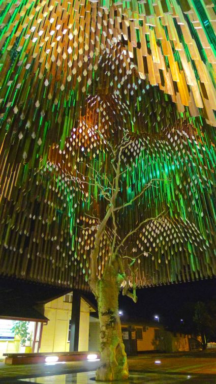 The Tree of Knowledge, Barcaldine