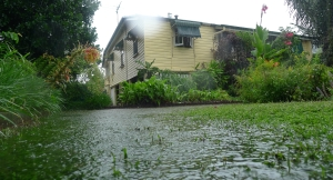 Nature strips and turf mitigate stormwater, erosion and the Heat Island Effect