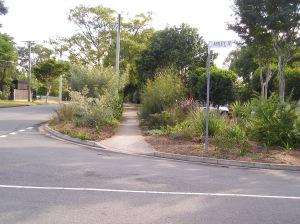 Duncan Street nature strip, Brisbane