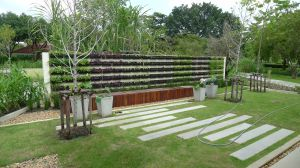 A grass and paver solution to kerbside planting, Bangkok