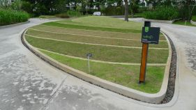 Turf Plots Display, Bangkok