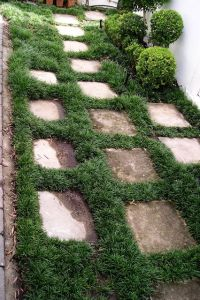 Pavers and Mini Mondo, an option between kerbs and footpaths