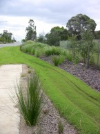 Good design: grass collects, directs stormwater. Quarry Rd, Redlands