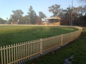 Sports Turf: Richmond cricket oval