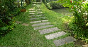 Good design for kerbsides: Pavers and Durban grass, Suan Pakkad Palace, Thailand