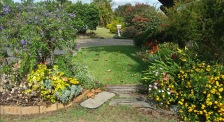 Posties view: Debra's footpath garden
