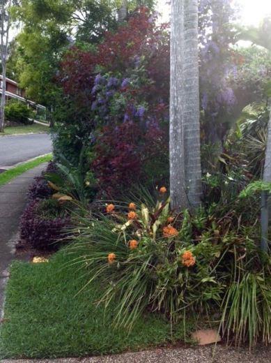 Steve and Jan's rainforest footpath garden tames the western sun, reducing cooling bills