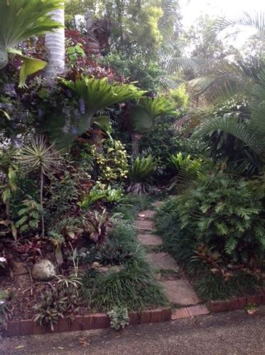 Steve and Jan's rainforest footpath garden tames the western sun, reducing cooling bills