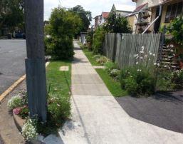 Energex thanked Mr Loveday for brightening this Brisbane power pole