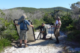 L to R: Chris, Mike and Christal shooting Hibbertia, Noosa National Park.