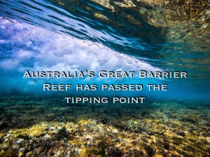 Great Barrier Reef: 60% bleached and ecologically dysfunctional in 5 years