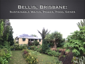 Bellis: an affordable, versatile model of sustainable power, water, genes and food production