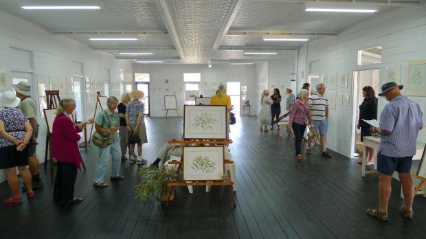 Jenny Mace's Botanica Art Exhibition, Barcaldine