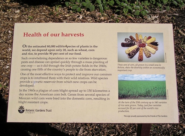 The Health of Our Harvests, Rare and Threatened Plants Garden, Sydney Botanic Gardens, 1998.