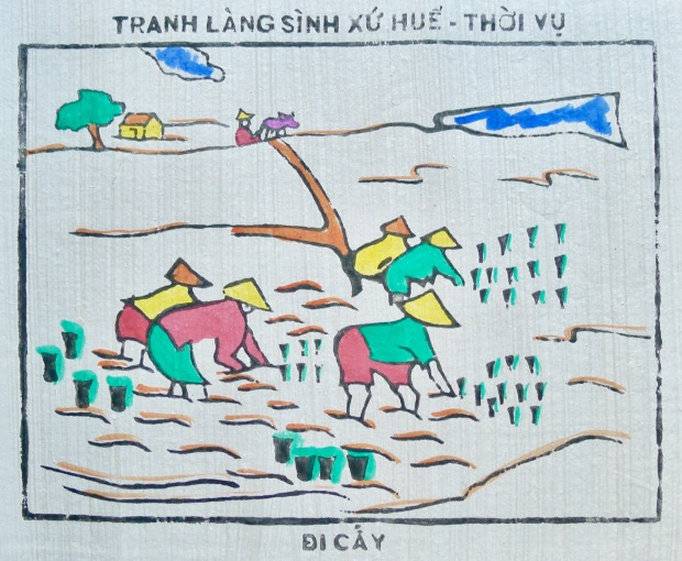 Rice sowing begins in Huế, Central Việt Nam.