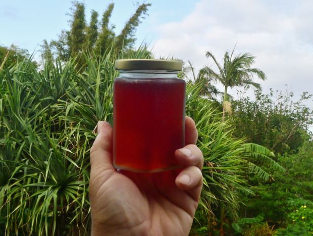 Coolamon (Syzygium moorei) jelly