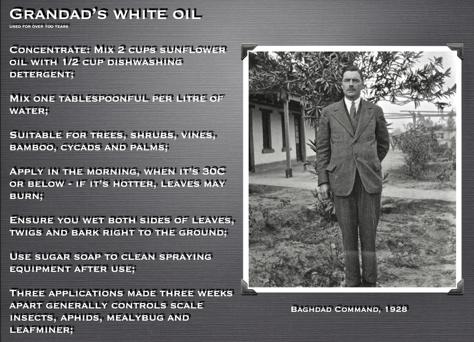 Grandad's white oil spray mix/ formula