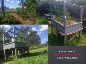 Lisa-Jane Stockwell/ Maximum Security vegetable bed - 4