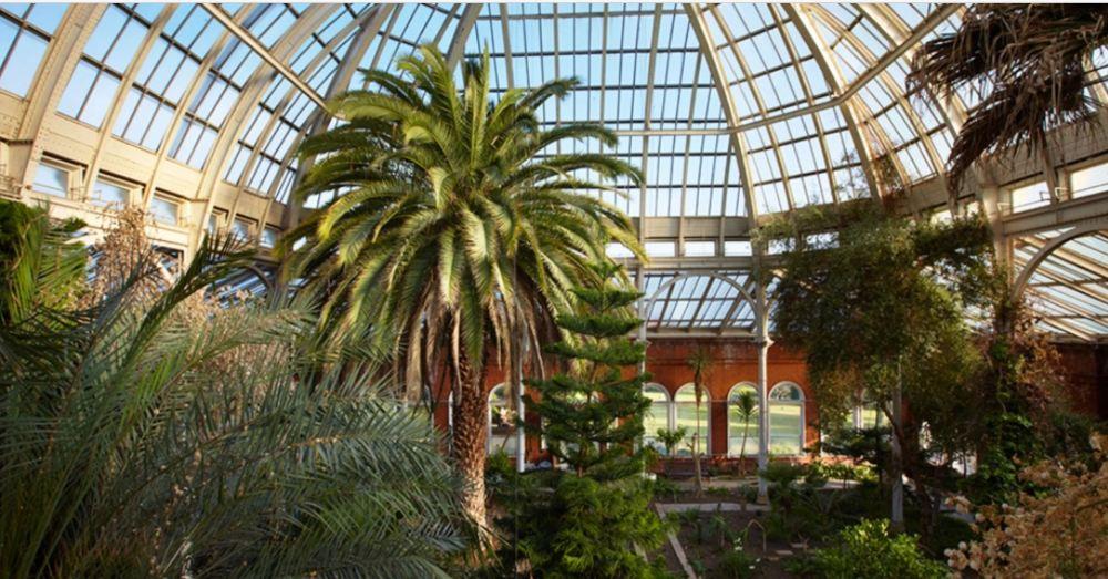 Avery Hill Winter Garden
