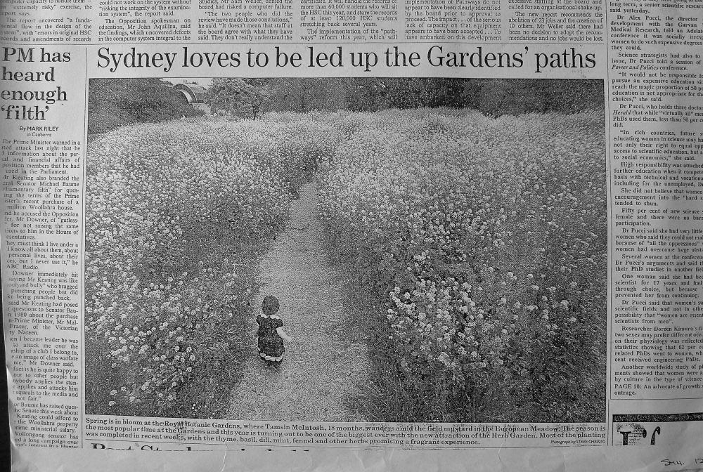 Up the garden path/ Sydney Morning Herald, 12th October 1994