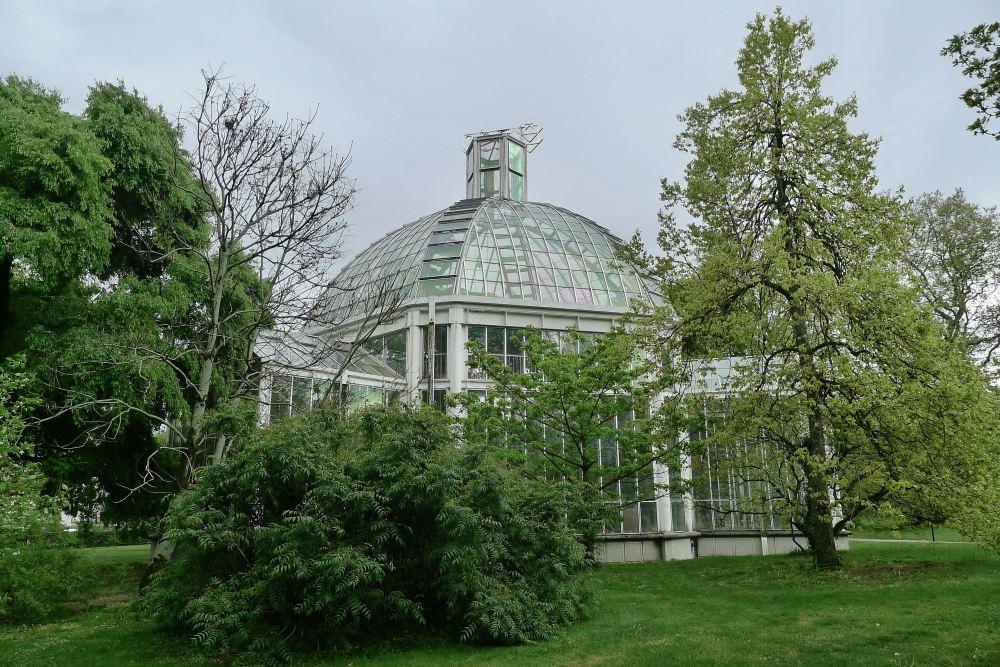 Winter garden, Geneva - 3
